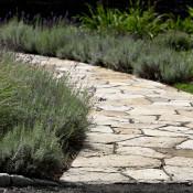 Egremont – Curving South Bay Quartzite entry walk lined w Lavender
