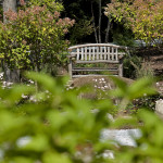 Monterey – Rustic bench by Brad Weatherup in sitting nook