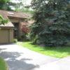 Nina's garden before 1