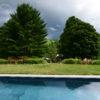Richmond pool enviro