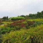 richmond farm fall land design